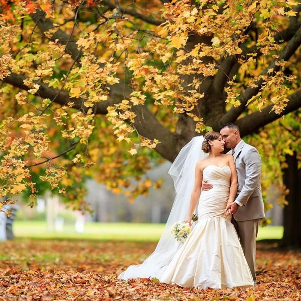 Josepha & Craig's Hall of Springs Wedding Photos