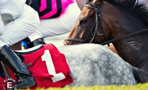 Saratoga-Race-Course-Photos04